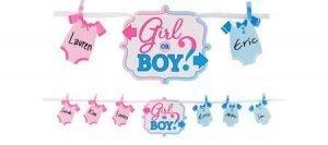 Baby Shower Niño o Niña Revelacion Banner